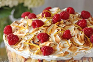 raspberry-lemon-meringue-pound-cake-7